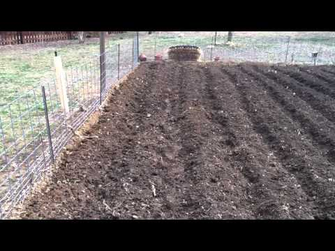 How to make furrows with a tiller in Bubba's garden