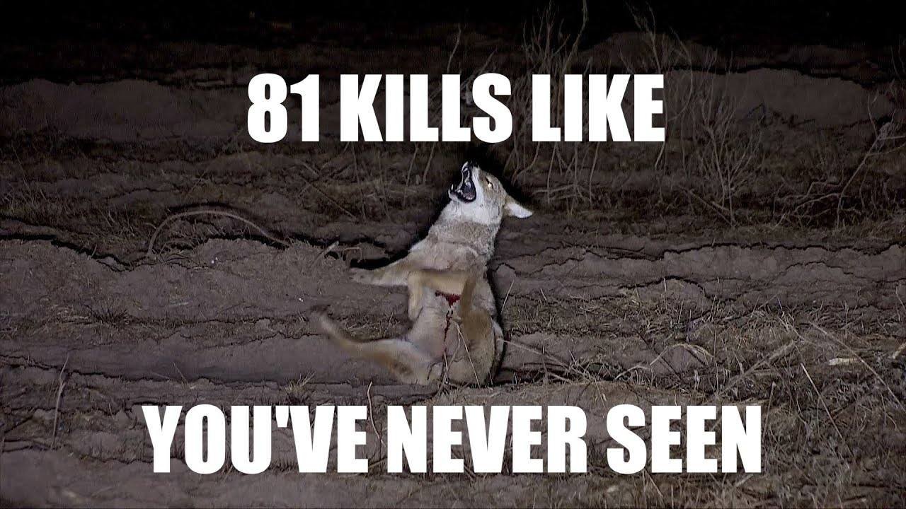 81 NIGHT CREW KILLS. Trust me.......you have time!