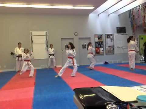 Shotokan Karate Green Belt Testing IKD Syllabus 2012