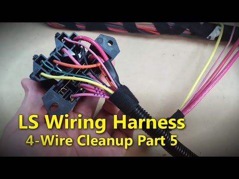 LS Wiring Harness Part 5 | Project Rowdy Ep017