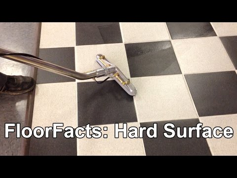 FloorFacts: Hard Surface Wand + Portable Extractor
