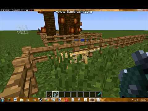 Minecraft - How to Tame an Ocelot/Get a Pet Cat