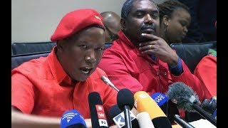 'We're going to fight you until you rot in jail': Malema's promise to Zuma