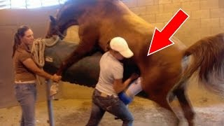 10 Worst Jobs That Actually Exist
