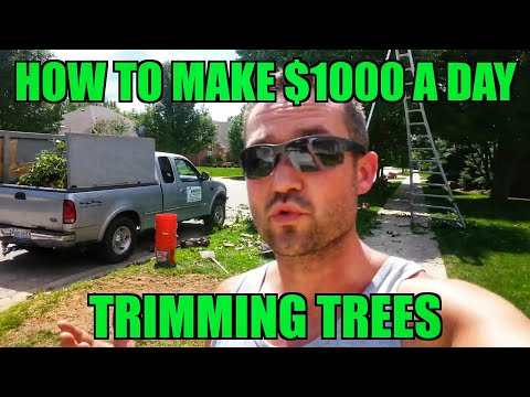How to Make $1,000 A DAY Landscaping - Trimming Trees - Arborist Ladder