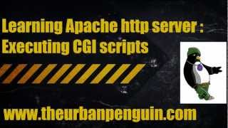 Learning Apache http server - Executing CGI scripts