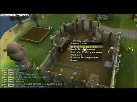 how to get a pet on runescape