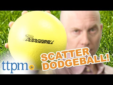Coop Scatter Dodgeball from SwimWays