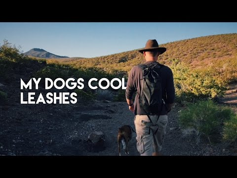 [My Dogs Cool] - Climbing Rope Dog Leash