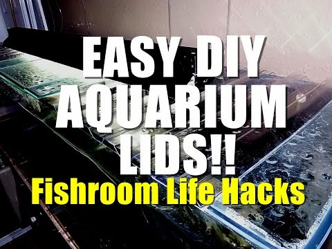 EASY DIY AQUARIUM LIDS!! | Fishroom Life Hacks
