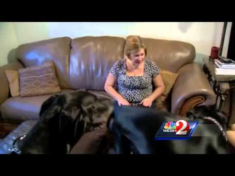 Volunteers help care for pets of deployed military families