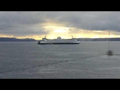 Busker from Speakeasy Jazz Cats on Ferry Seattle to Bainbridge