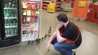 Duck dynasty invades Home Depot store