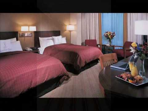 Best New York Hotel Low Room Rates Special Offer Holiday Room Package