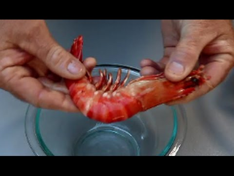 How to Peel Prawns | The Hook and The Cook