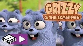 Grizzy ve Lemmingler | Leming Bowling
