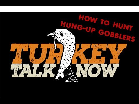 Turkey Hunting: Tips for Hung-Up Gobblers