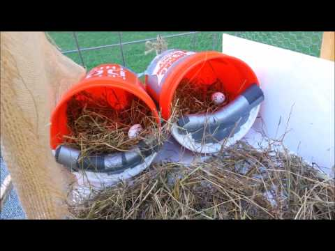 Nesting Boxes from 5 Gallon Buckets ~ DIY with me