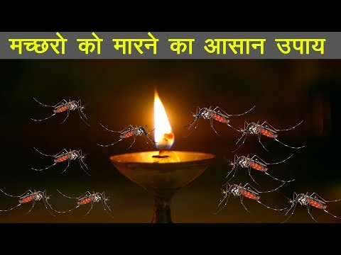 5 रुपये में मच्छरों को मारने का जबरदस्त घरेलु उपाय ! मच्छरों को मारने का आसान उपाय
