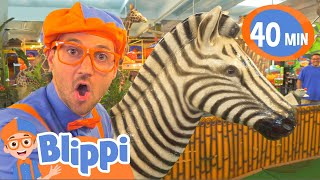 Blippi Learns Jungle Animals | Animals For Kids | Educational Videos For Children
