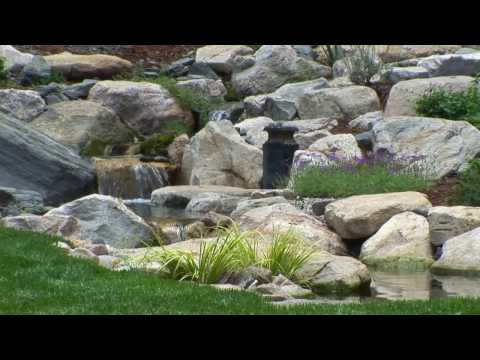 Trout Pond with Waterfalls: A Dream Come True