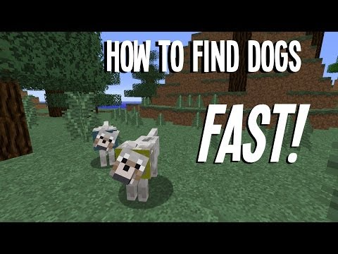 Minecraft: How to find Dogs (Wolves) Fast!! In 1.8!
