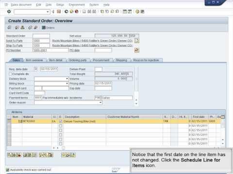 Demo 9.11 Create Sales Order (Manufactured Goods Scenario)