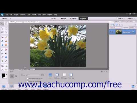 Photoshop Elements 13 Tutorial The Undo Command & Undo History Panel Adobe Training