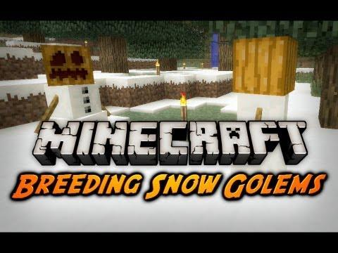Minecraft: Snow Golem Breeding, Teleporting, Item Repair (Beta 1.9 Pre-Release 2)