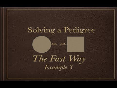 Solving a Pedigree the Fast Way (example 3)