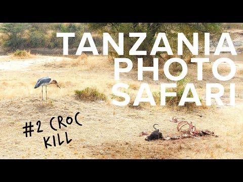 Tanzania Photo Safari - Crocodile Kill in Serengeti