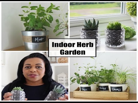 DIY| How to make an Indoor Herb Garden