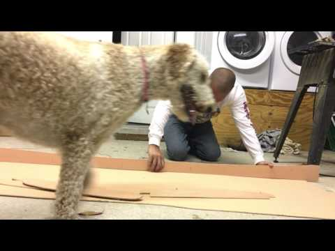 Wood Mini Simmons Surfboard Build