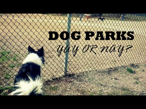 Dog Parks - To Go OR Not To Go