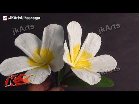 DIY How to make Crepe Paper Plumeria Flower JK Arts 380