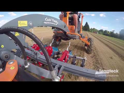 Terrateck - tool carrier tractor precision weed control on double carrots row
