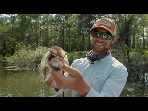 What Makes a Frog the Best Heavy Cover Topwater Lure