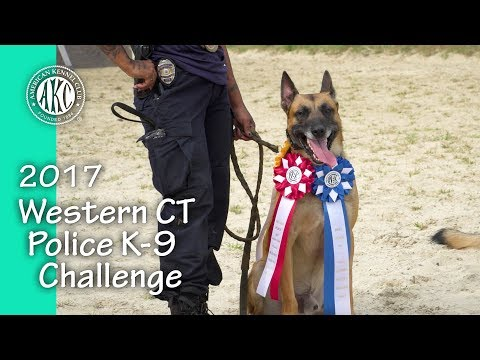 2017 Western CT Police K-9 Challenge