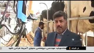 Iran Mullah farmer Agriculture products, Mehriz county توليد محصولات كشاورزي آخوند مهريز ايران