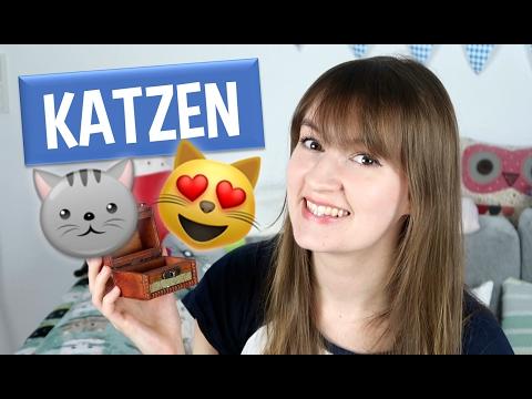 German 'Katze' Words | Wortschatz