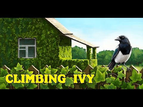 Climbing Ivy (android)