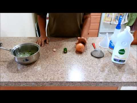 How To Make Homemade Pesticide for your Vegetable Garden