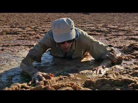 My plan B to get out alive of Quicksand