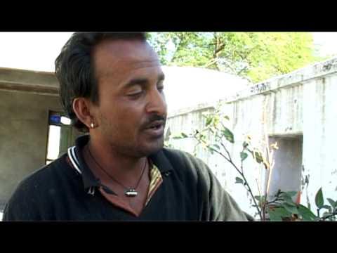 Madventures I - India - Datura