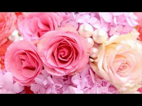Forever Preserved Roses