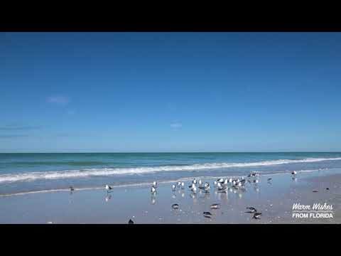 Warm Wishes from Florida: Naples Beach