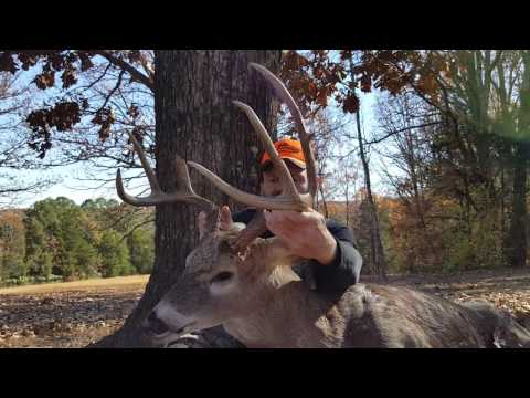 2016 Rocky Branch Outfitters- Bob's Big 8