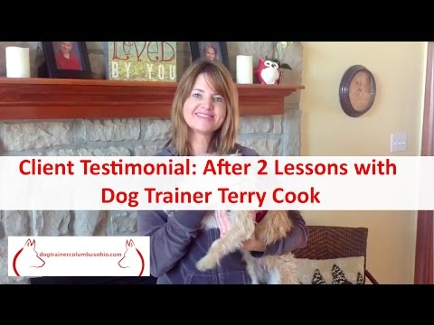 Top Columbus Ohio Dog Trainer Terry Cook: Client Testimonial: After 2 Dog Training Lessons