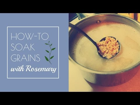 How to Soak Grains, Nuts, Seeds, and Legumes Before Cooking