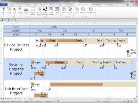 Swimlane Timeline Webinar Oct 2011 (Multi-Project View Demo) Part 3 of 6
